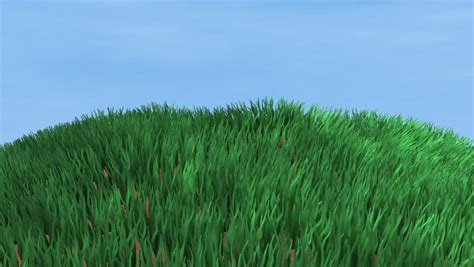 Green Grass Blowing In The Wind On Hill Stock Footage