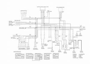 Honda 250 Sportrax Wiring Diagram