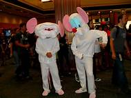 pinky and the brain halloween costumes