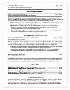 PROFESSIONAL RESUMES CV TEMPLATE