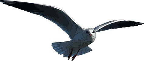 Seagull Clipart Seagull Clip Cliparts