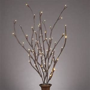 Lighted Willow Branches - Contemporary - Home Decor