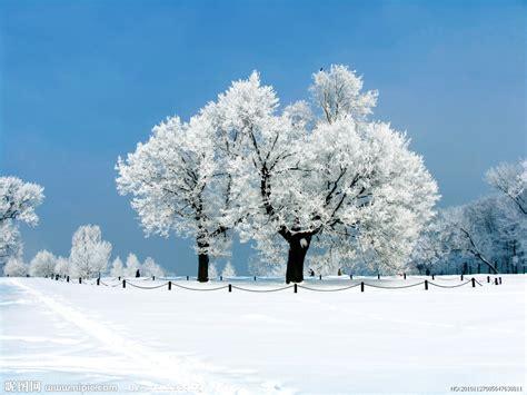 冬季雪景高清图片摄影图 自然风景 自然景观 摄影图库 昵图网nipic com
