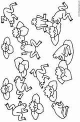 Dibujos Rin Renacuajo Ranas Anfibios Freecoloringpages Dibujosyjuegos sketch template