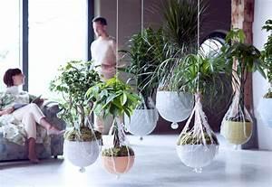 Plantes à Suspendre : les plantes d 39 int rieur s 39 invitent dans notre d coration ~ Premium-room.com Idées de Décoration