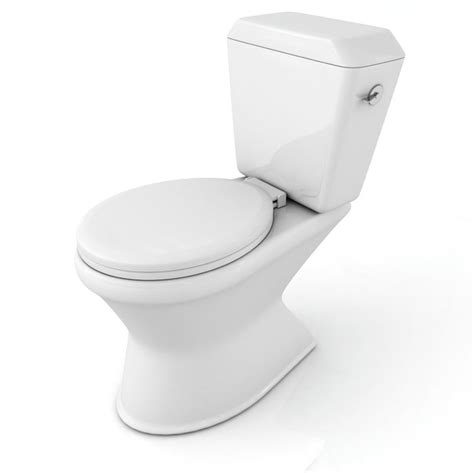 the invention of the toilet who invented the toilet crutchfield dermatology