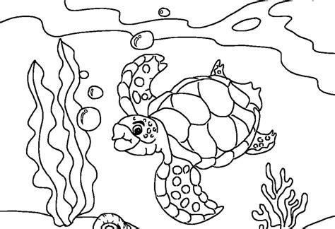 sea turtle coloring pages sea turtle coloring pages printable coloring pages