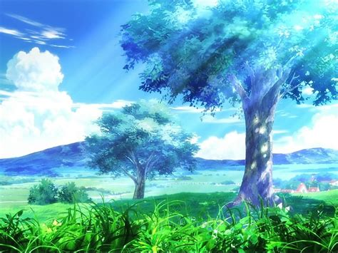 Tree Anime Wallpaper - anime trees wallpaper hd 1080p free desktop