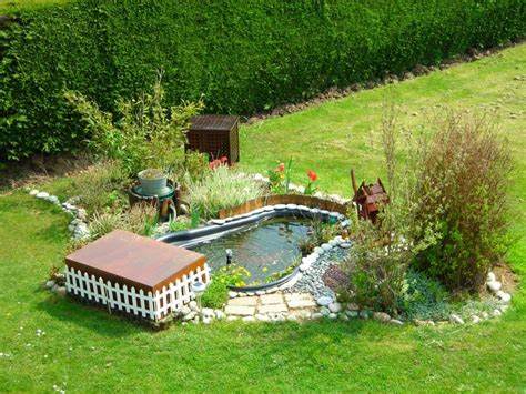 petit bassin de jardin mamzelle didounne76 mon petit bassin de jardin photos aquariophilie org