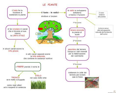 Animali Da Cortile Definizione by Paradiso Delle Mappe Aprile 2012