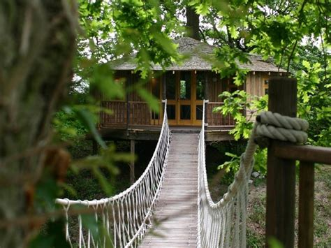 Treehouses : The World's Coolest Treehouses