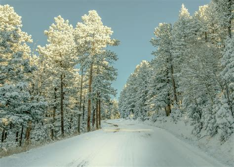 Hd Winter Photo by Winter Wallpapers Hd