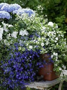 Dauerbepflanzung Für Balkonkästen : die besten 25 blau und wei ideen auf pinterest blau ~ Michelbontemps.com Haus und Dekorationen
