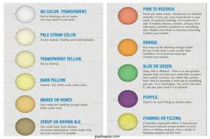 Pee for Urine Colors Chart