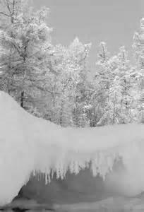 Beautiful Scene Winter Snow Wonderland