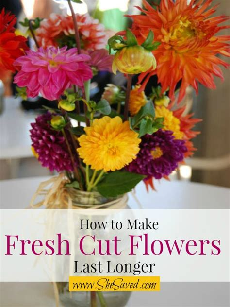 Make Cut Flowers Last Longer by 7 Ways To Make Cut Flowers Last Longer Shesaved 174