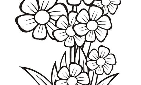 wow 12 gambar vas bunga sketsa