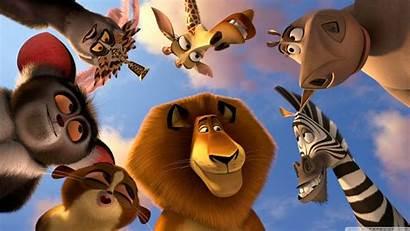Cartoon Animated Wallpapers Movies Madagascar Animals