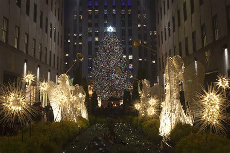 real christmas tree or fake christmas tree what type of