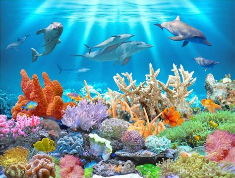 wallpaper custom photo mural underwater dolphin coral