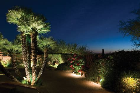 landscape lighting showcasing  garden  night
