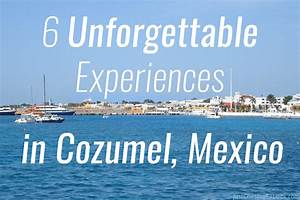 6 Unforgettable Experiences in Cozumel Just Chasing Rabbits