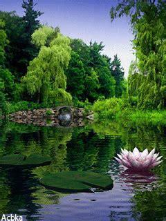 Permalink to Nature Wallpaper Gif Download