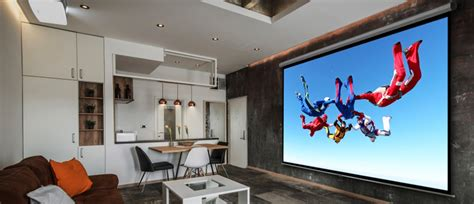 type  paint    projector screen