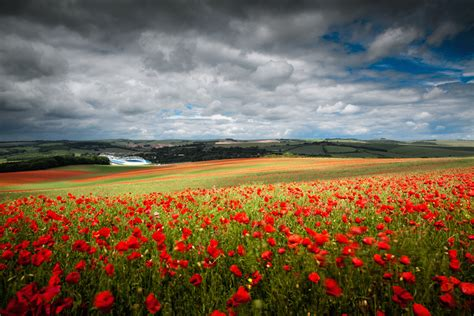 landscape images gerard charnley brighton and sussex landscape photography