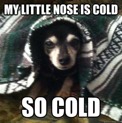 Cold Meme - so cold memes quickmeme