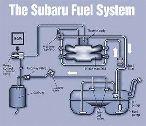 What Are The Maintenance Requirements For Subaru Fuel