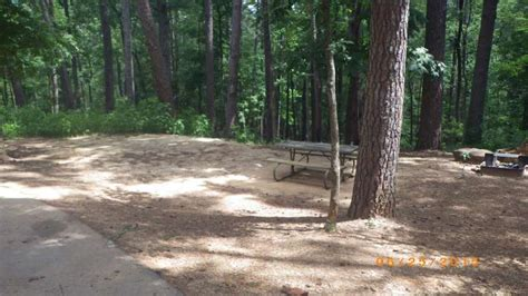 tyler state park campsites  electric water hookups texas parks wildlife department