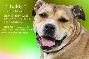 Süßkartoffel Für Hunde : osterwichteln wunschzettel der hunde leroy und melody mit hund gesund ~ Yasmunasinghe.com Haus und Dekorationen