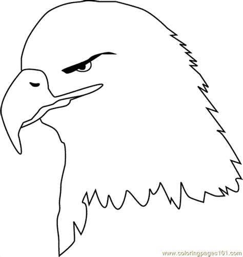 bald eagle template coloring pages bald eagle clr countries gt usa free