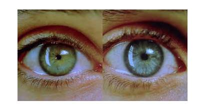 Someone Happens Pupils Dilate Person Attracted Fact