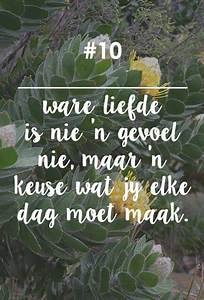 Fynbos Vrou | �... South African Marriage Quotes