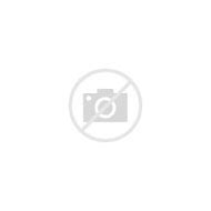 Silver and Gold Decorative Throw Pillows