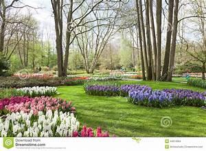 Tulpen Im Garten : fr hlings blumen im keukenhof tulpen garten die ~ A.2002-acura-tl-radio.info Haus und Dekorationen