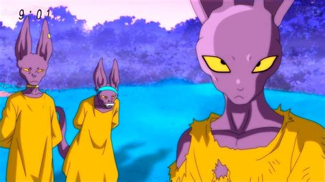 beerus race character revealed   tournament