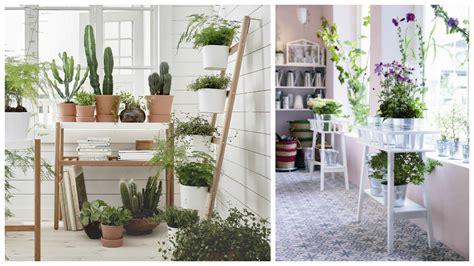 plantes pour chambre deco chambre plante 053117 gt gt emihem com la meilleure