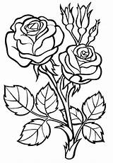 Roses Coloring sketch template