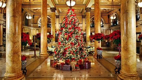 hotels  holiday decorations   worth  visit