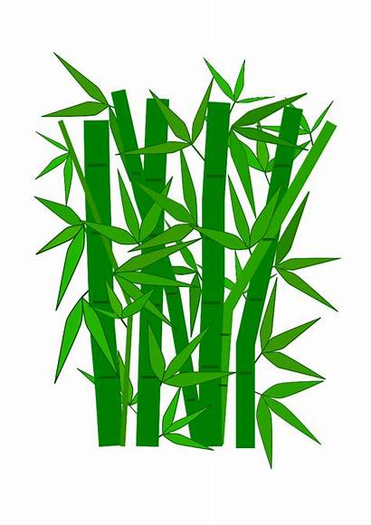 Bamboo Clip Cliparts Svg Projects Attribution Forget