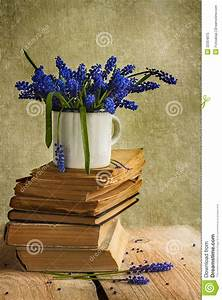 Bouquet Hyacinth Flowers Books Vintage Wooden Royalty Free ...