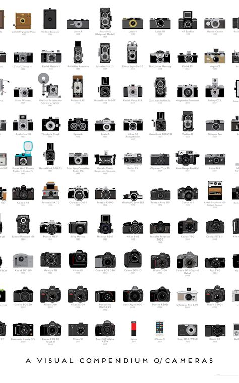 infographics   photography cameras