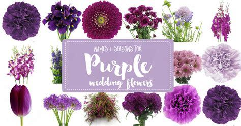 Complete Guide To Purple Wedding Flowers, Purple Flower
