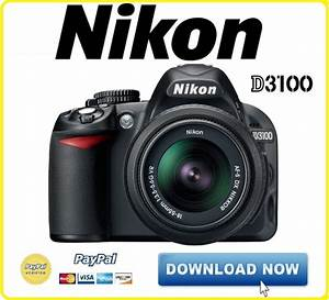 Nikon D3100 Dslr Service Manual  U0026 Repair Guide