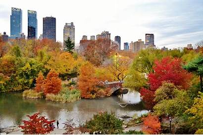 Central Park York Autumn Fall Foliage Wallpapers