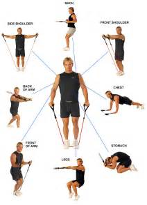 How Much Is The Bench Press Bar by Killer Rear Delt Exercise Laying Cable Fly Variation