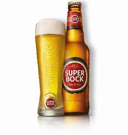 Bock Beer Cerveja Beers Superbock Fino Bottle
